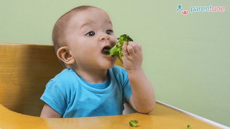 Parentune 10 Finger Foods For 7 Month Old With No Teeth