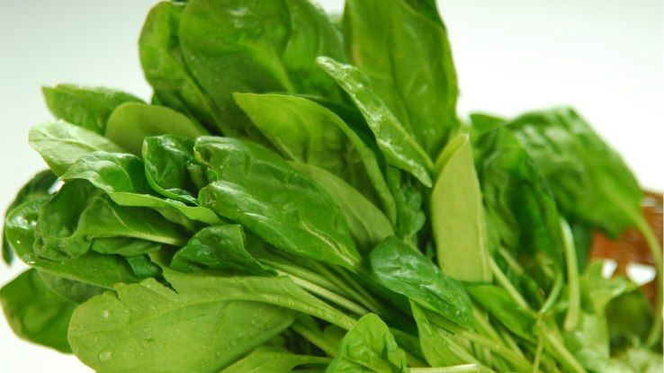 Is Spinach Palak Cause Allergy in Kids Spinach Allergy Vs Intolerance Symptoms