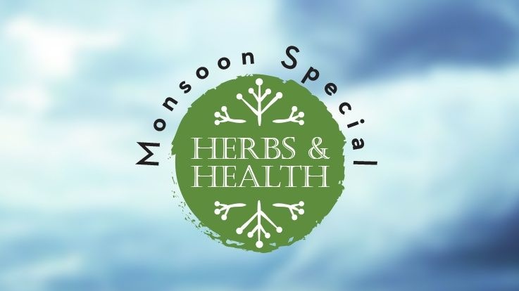 Monsoon Special Herbs to Keep Your Family Upbeat through the Rainy Season