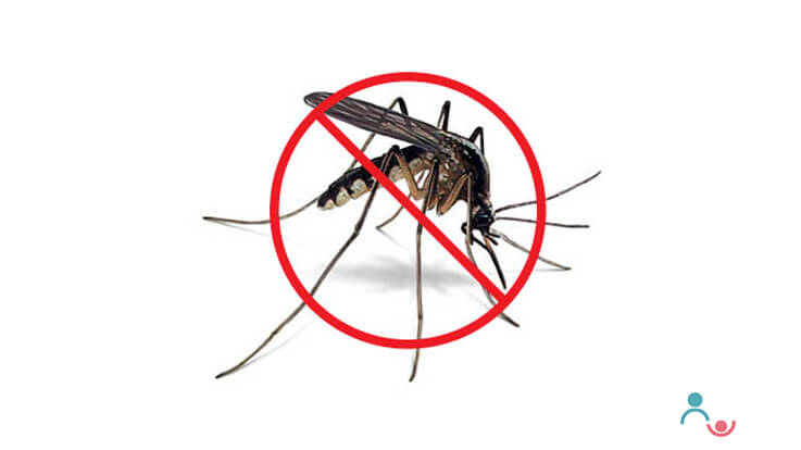 Dengue Fever Symptoms Diagnosis Precautions for Your Children