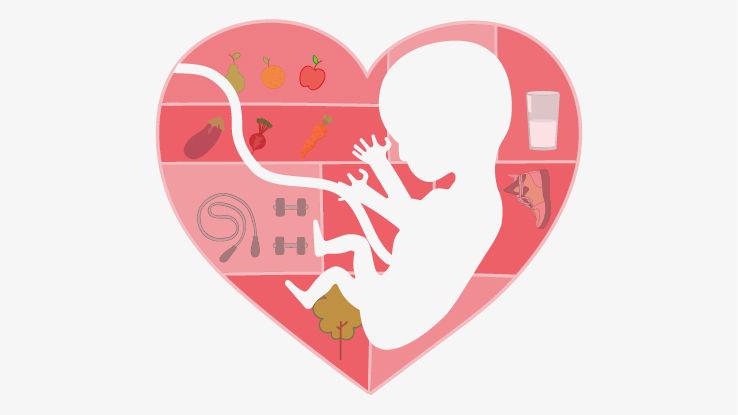 जानिए क्या है भ्रूण के अच्छे विकास के लिए जरूरी 5 बातें