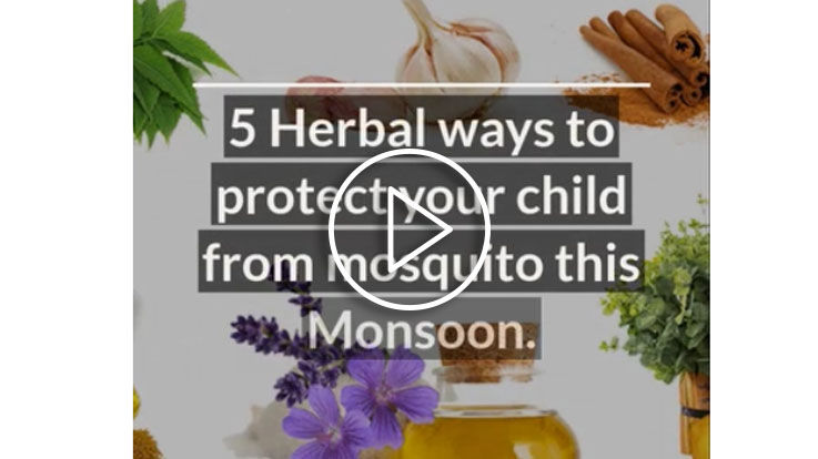 Herbal ways to protect your child from mosquito