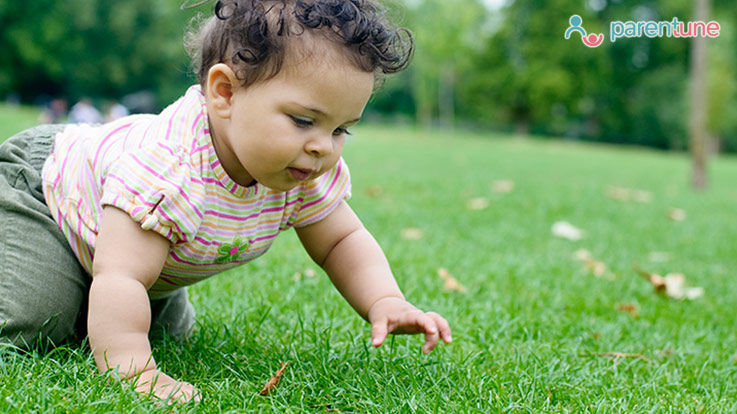 Why Is Crawling Good For Your Baby
