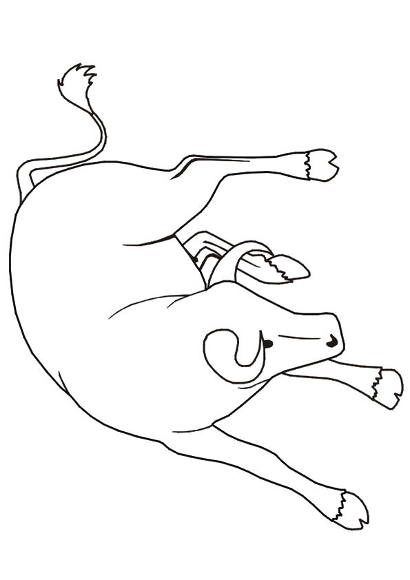 Aggressive Bull coloring pages