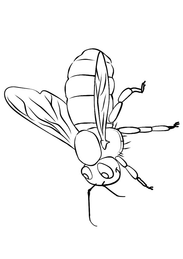 Moving Bee coloring pages