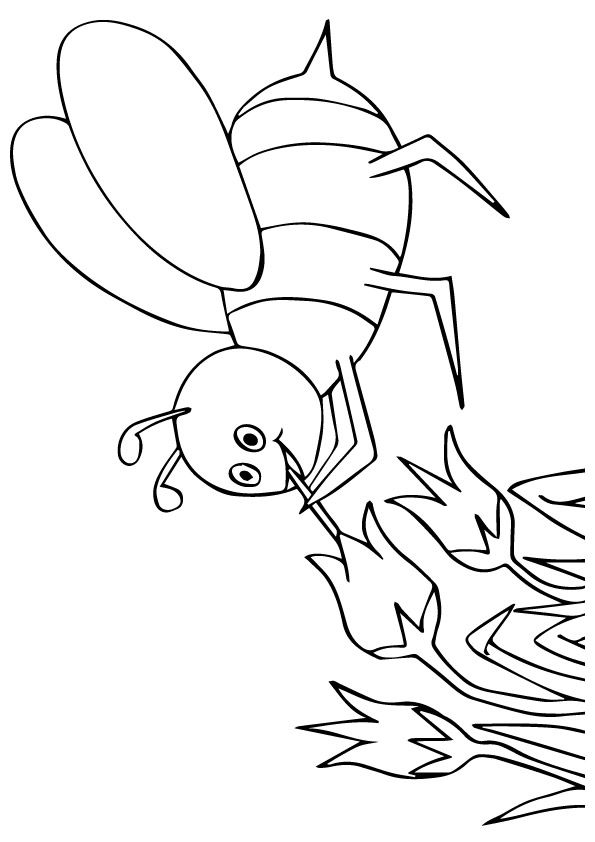 Cartoon Bee coloring pages