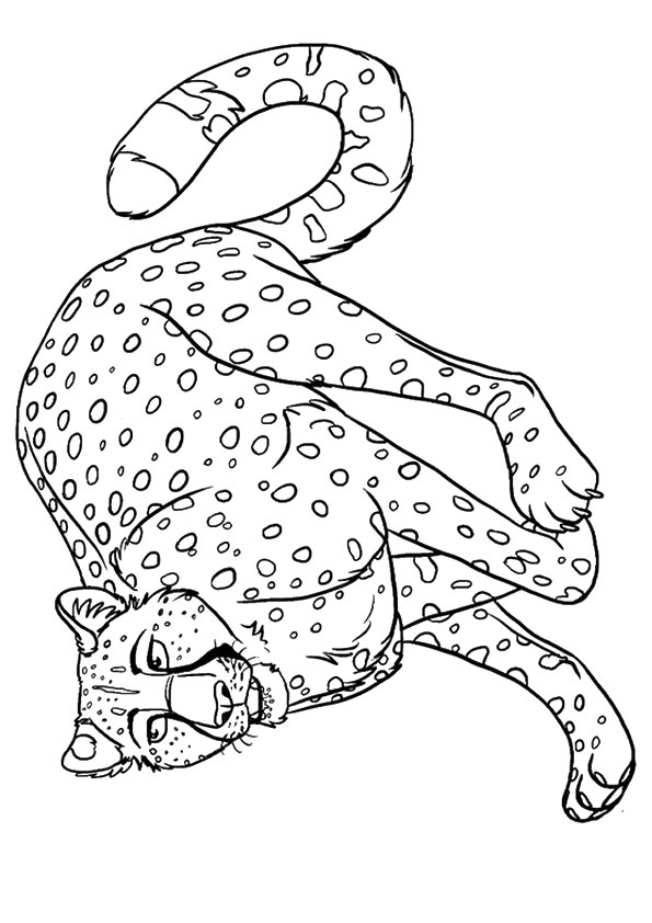 Angry Cheetah 2 coloring pages