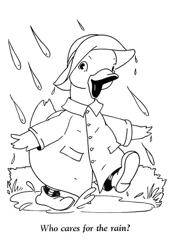 Donald Duck in Rain