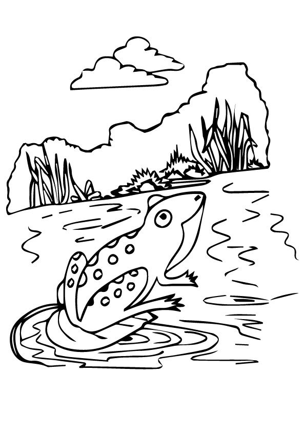 Darwins Frog coloring pages