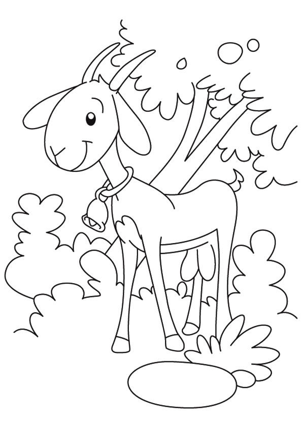 Goat Under Tree