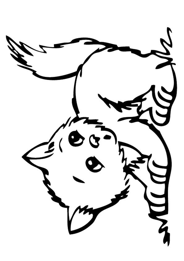 Banjo Kitten coloring pages