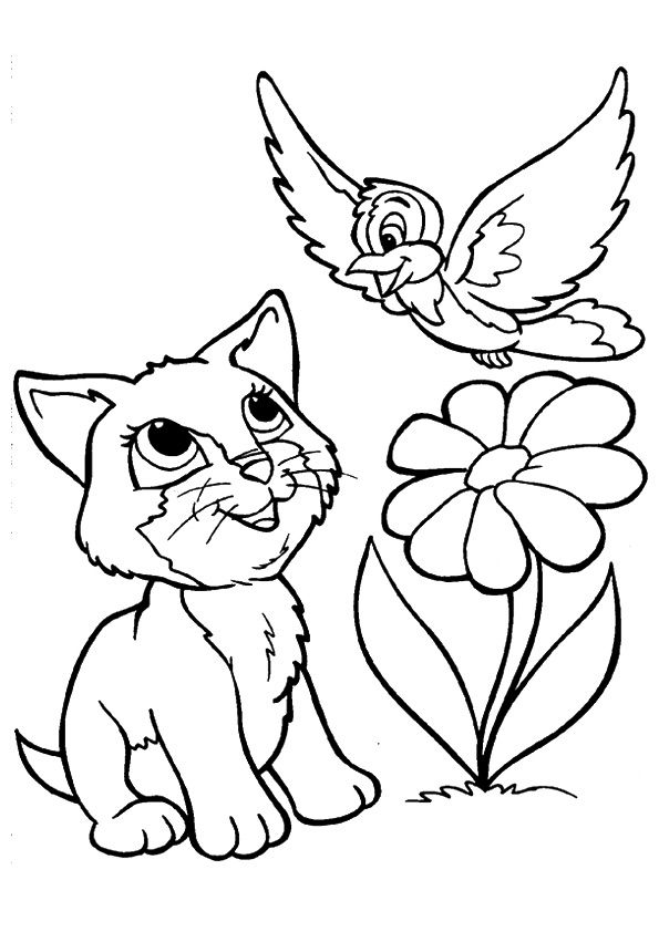 Kitten Playing with Bird coloring pages