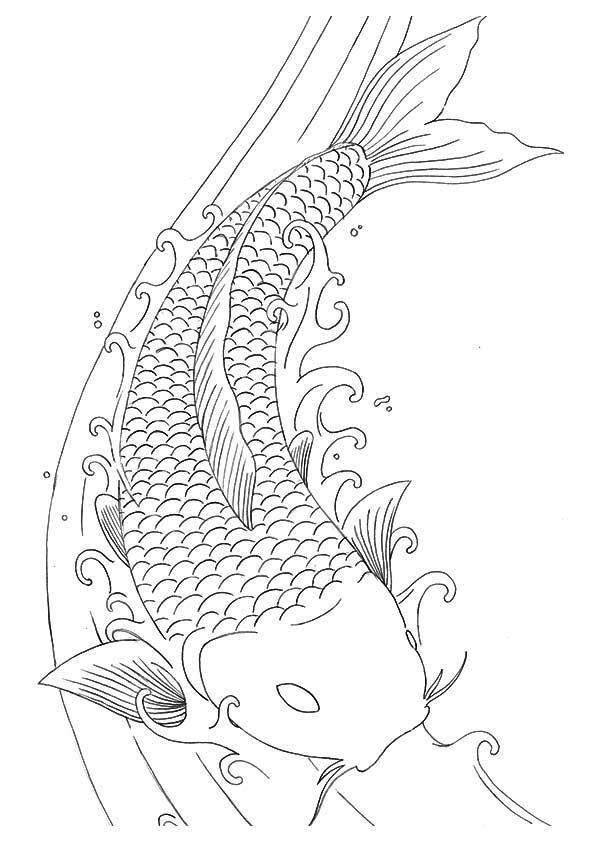 Koi Fish Dragon coloring pages
