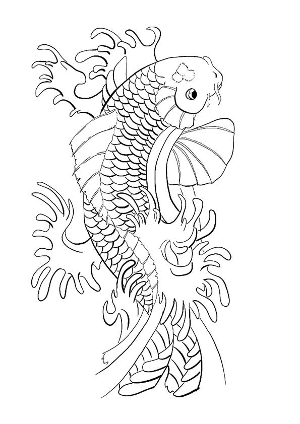Koi Fish Lordka