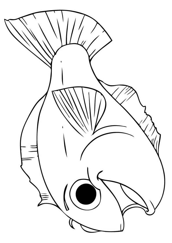 Happy Koi Fish coloring pages