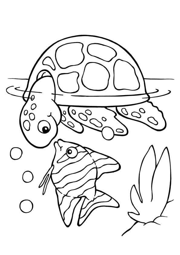 Koi Fish with Turtle coloring pages