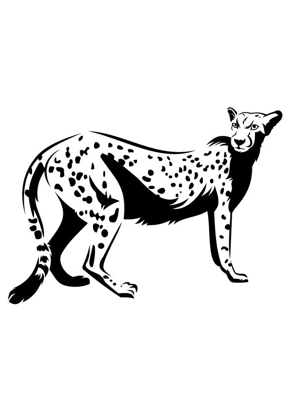 Outlined Cheetah coloring pages