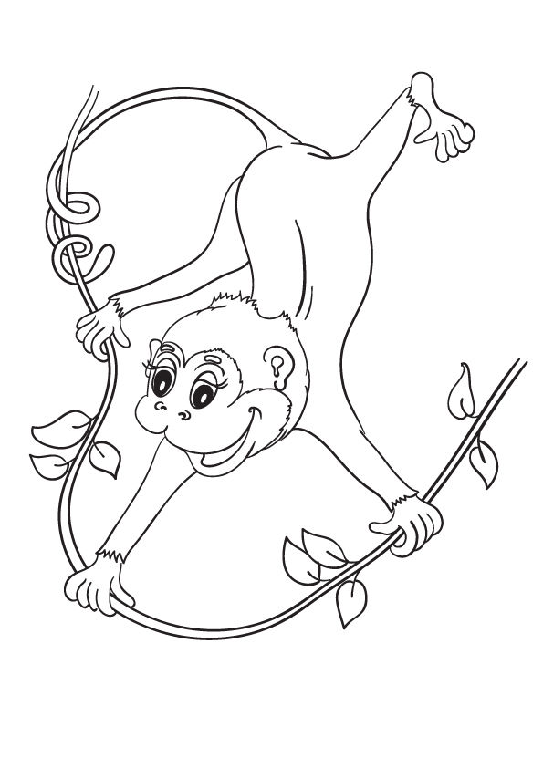 Monkey Cartoon 2 coloring pages