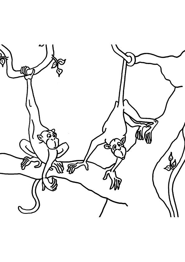 Free Printable Monkey Coloring Pages, Monkey Coloring ...