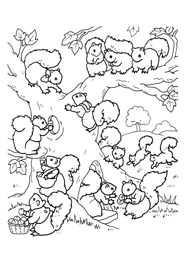 Busy Squirrel coloring pages