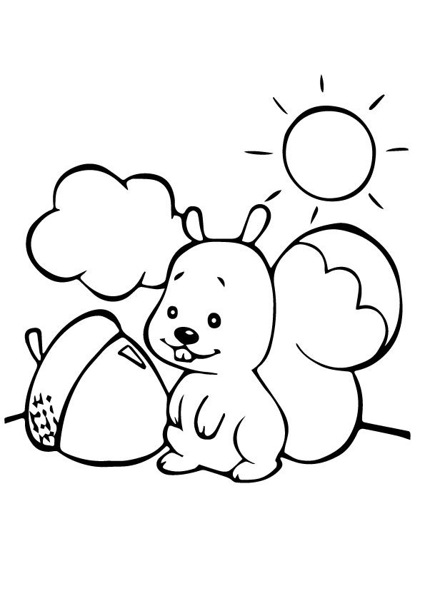 Squirrel in Sunnyday coloring pages