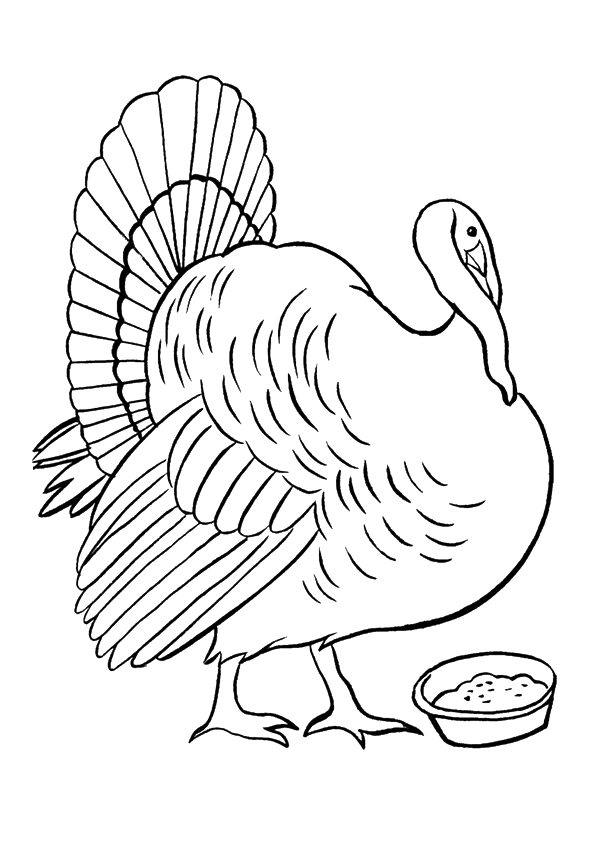 Turkey Eating Meal coloring pages