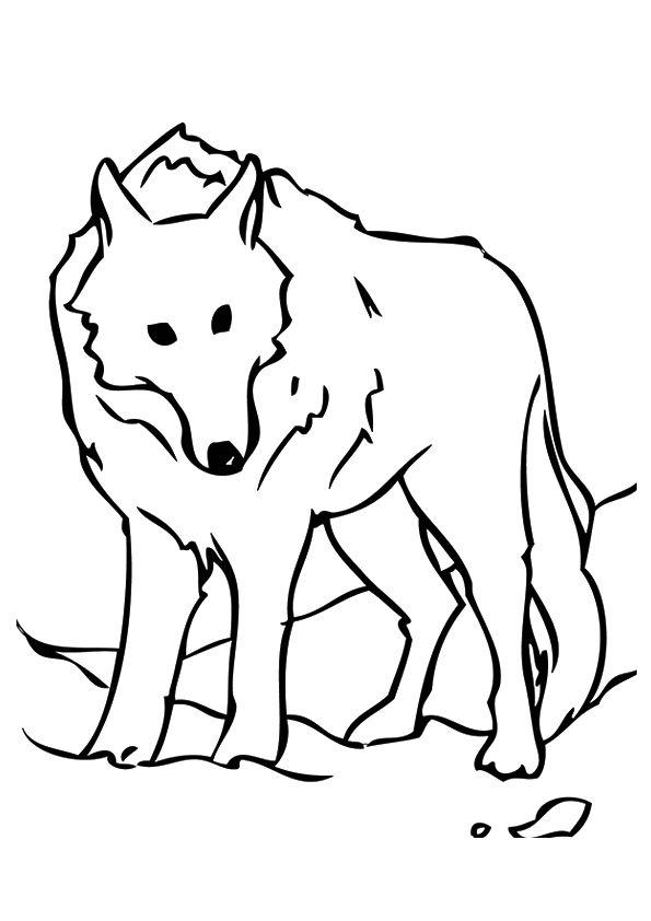 Stationary Wolf coloring pages