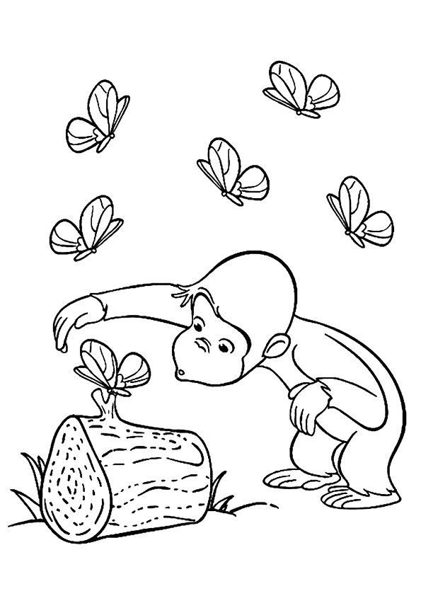 Curious George & Butterfly