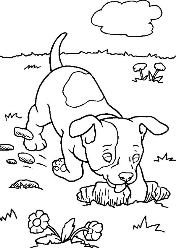 Max coloring pages