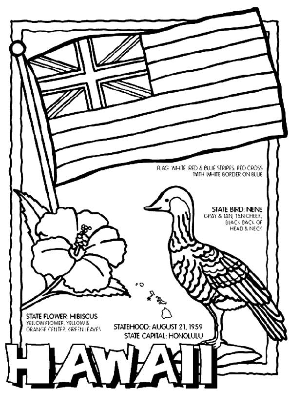 Hawaiian coloring pages
