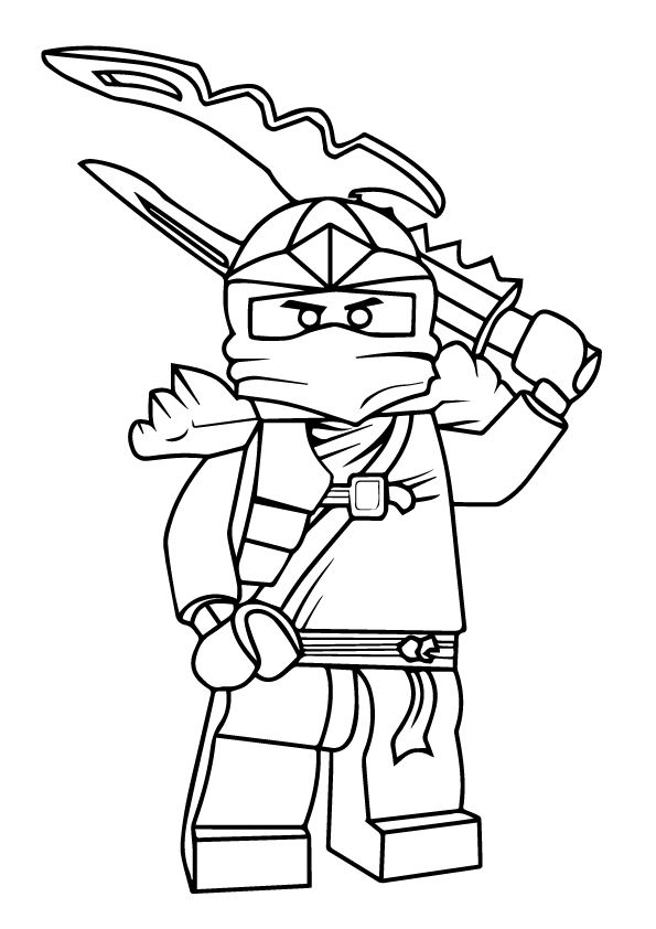 Jay coloring pages