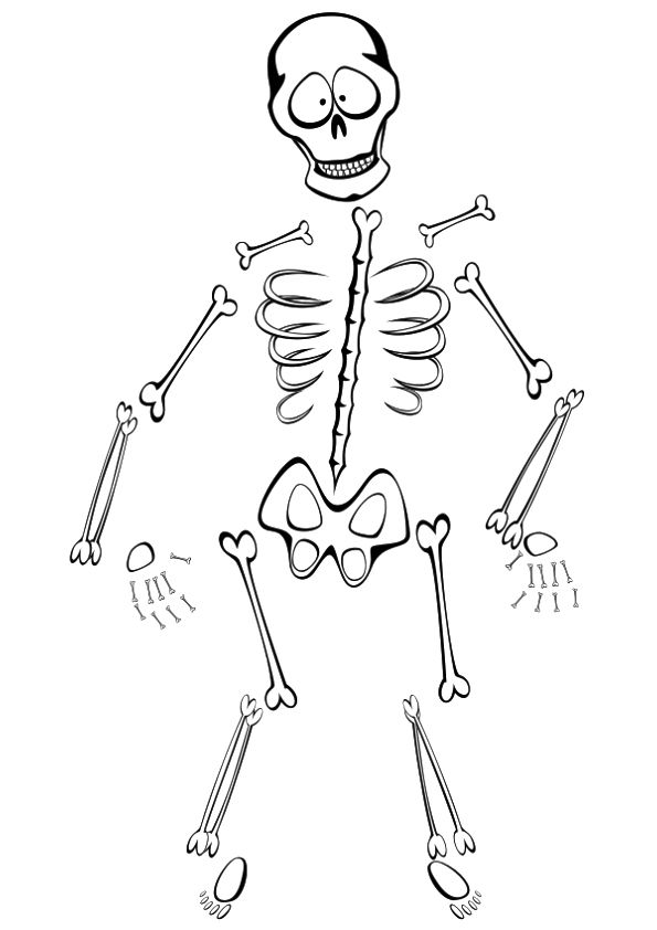 Free Printable Skeleton Coloring Pages, Skeleton Coloring