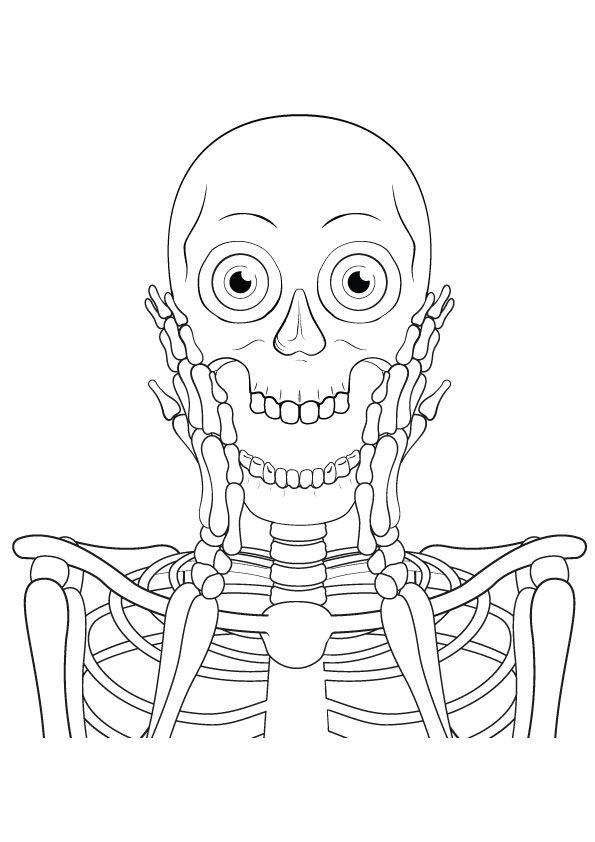 Free Printable Skeleton Coloring Pages, Skeleton Coloring ...