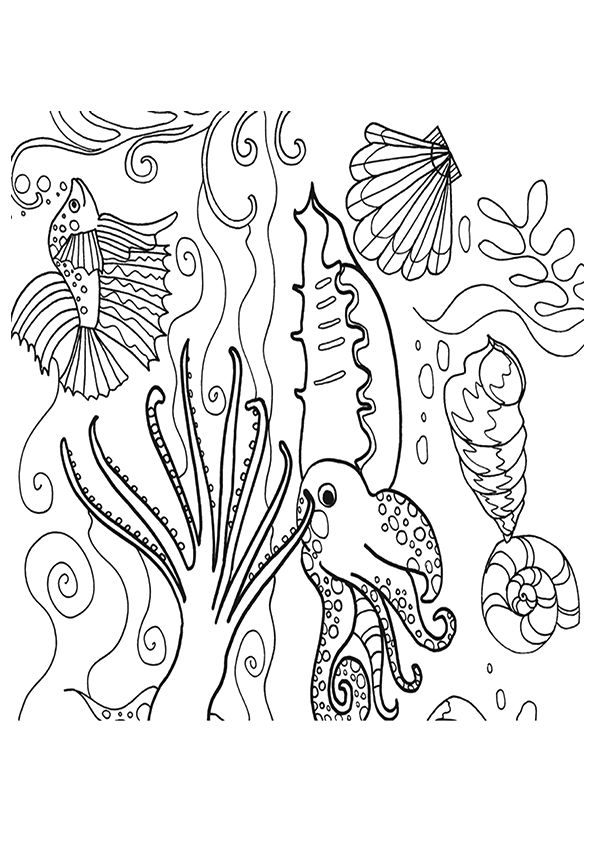 Barrier Reef coloring pages