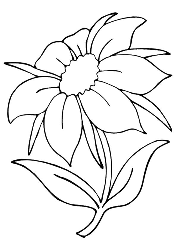 The Jasmine coloring pages