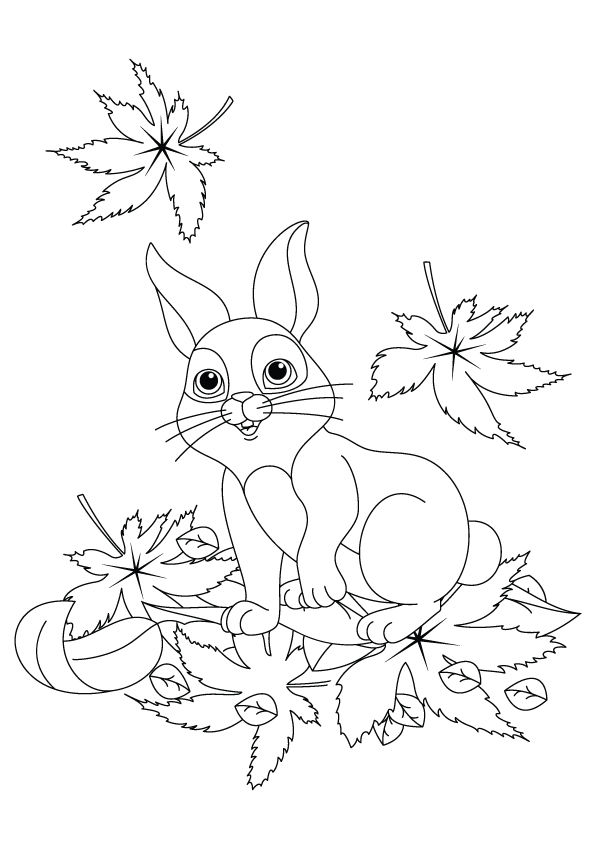 Hare Sitting in Leaves coloring pages