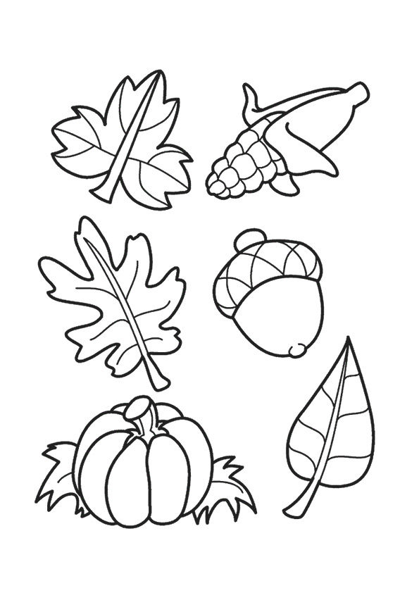 Leaves & Acorns coloring pages