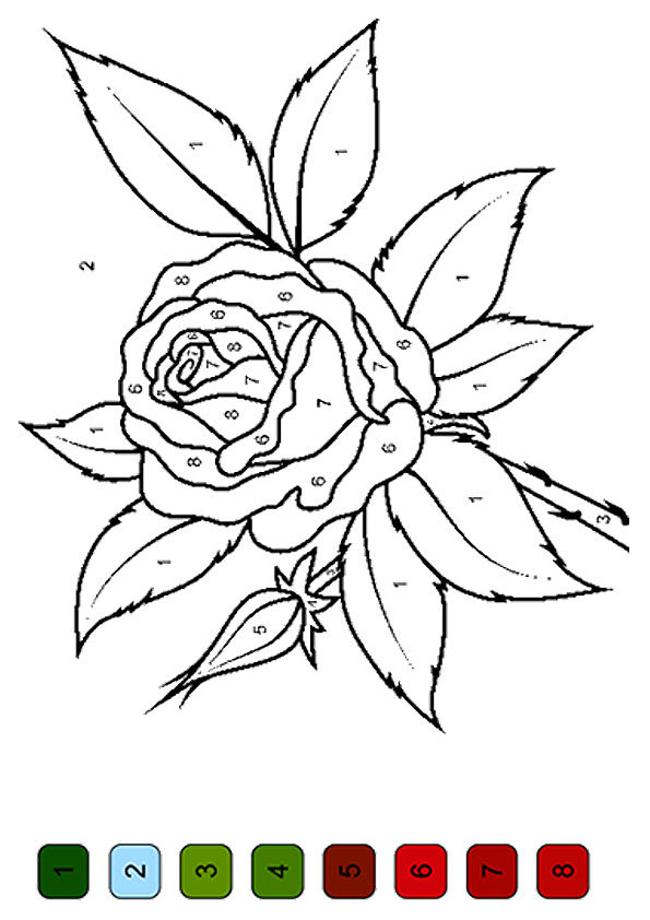 Rose color by number coloring pages