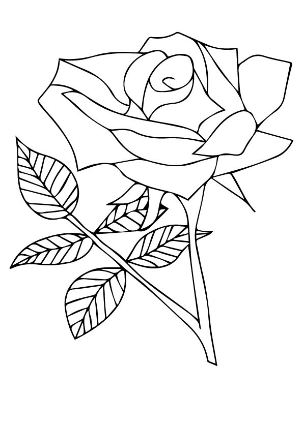 nature flower coloring pages