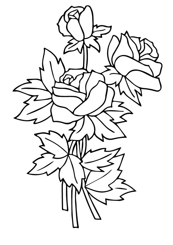 three rosas coloring pages