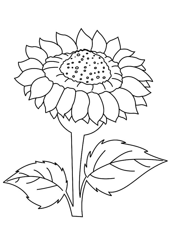 Dafna Sunflower coloring pages