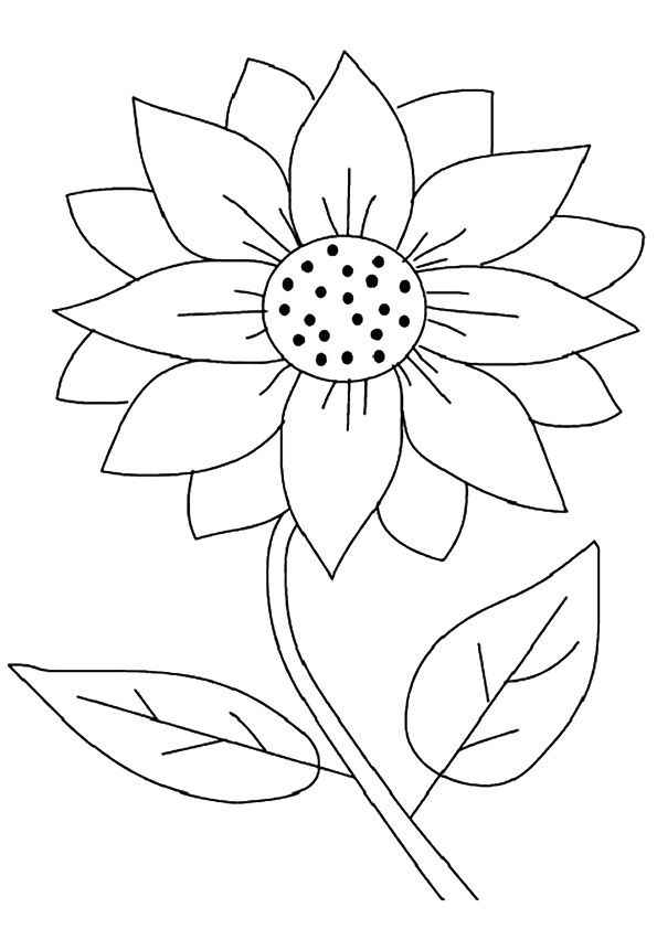 Maximilian Sunflower coloring pages