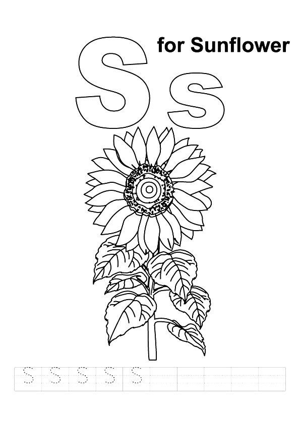 S For Sunflower coloring pages
