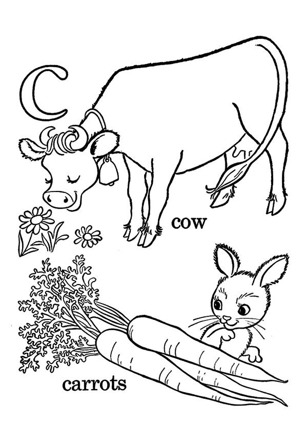Cow Eating Carrots coloring pages