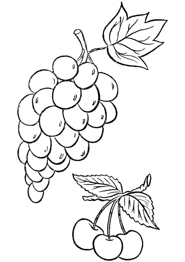 Grapes & Cherries coloring pages