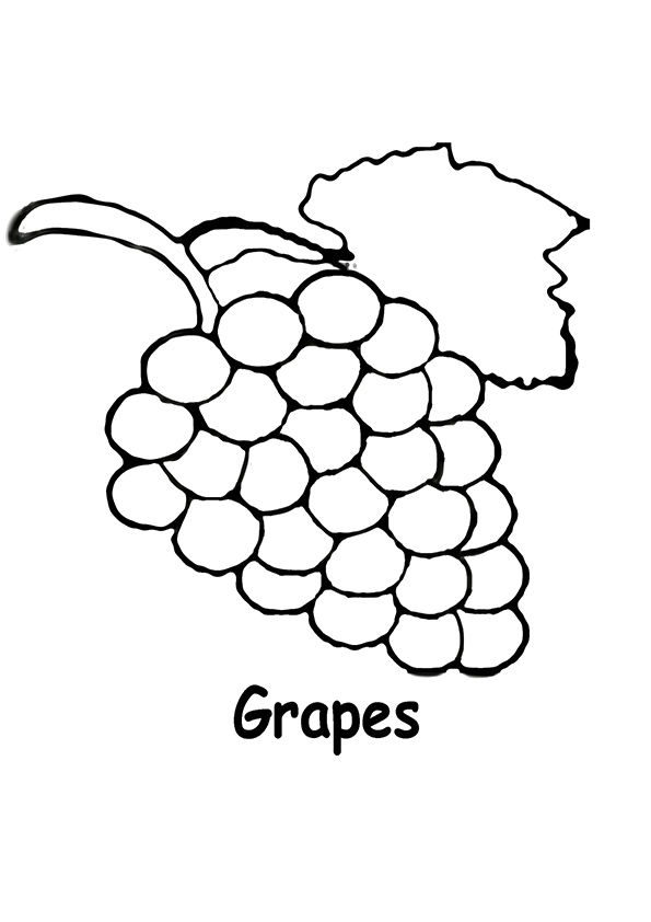 Delicious Grapes coloring pages