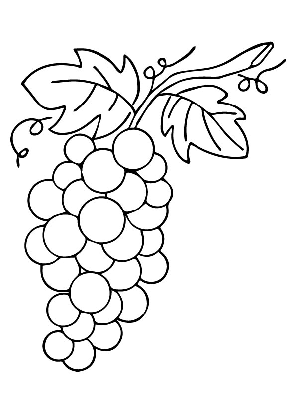 Leafy Grapes coloring pages