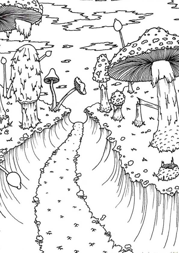 - Parentune - Free Printable Mushroom Coloring Pages, Mushroom Coloring  Pictures For Preschoolers, Kids