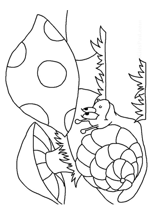 Mushroom Land coloring pages