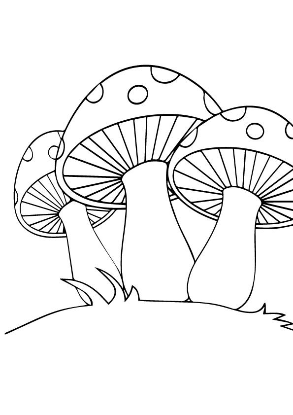 3 Mushroom Set coloring pages